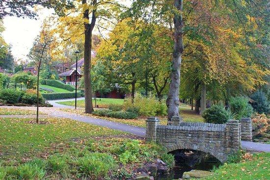 walsall-s-beautiful-arboretum
